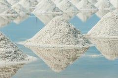 Montão do sal do mar Imagens de Stock Royalty Free