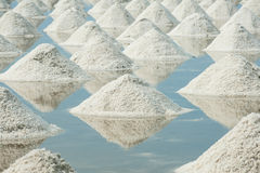 Montão do sal do mar Foto de Stock Royalty Free