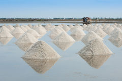 Montão do sal do mar Imagem de Stock Royalty Free