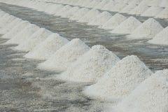 Montão do sal do mar Imagens de Stock