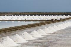 Montão do sal no campo de sal antes da colheita Fotos de Stock Royalty Free