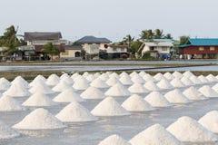 Montão do sal no campo de sal antes da colheita Imagem de Stock
