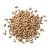 Montão do trigo soletrado imagens de stock