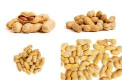 Montão dos amendoins como o fundo Vista macro de amendoins descascados fotos de stock royalty free