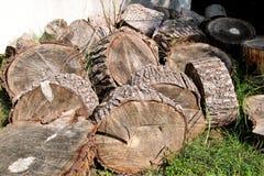 Montão dos logs de madeira prontos para o inverno Corte troncos de árvore na grama Pilha com madeira do incêndio Uma pilha das ma Foto de Stock
