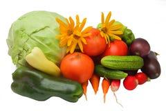 Montão dos vegetais Fotos de Stock