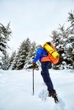 Montée d'hiver jusqu'au dessus de la montagne avec un sac à dos Images stock