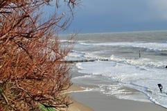 Montée subite de marée orageuse Photos libres de droits