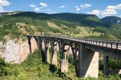Monténégro, pont de Djokovic, gorge de montagne Photos libres de droits