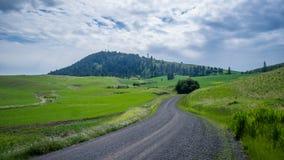 Montículo de Kamiak, Washington oriental Imagens de Stock Royalty Free