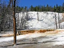 Montón anaranjado del resorte, Yellowstone Imagen de archivo