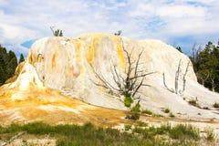 Montón anaranjado los E.E.U.U. América Grand Canyon de la primavera de Yellowstone Imagen de archivo libre de regalías