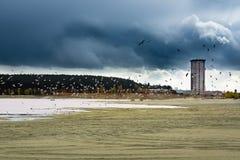 Montón de la arena en la mina de oro Imagen de archivo libre de regalías