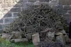Montón de la basura de madera en un jardín Imágenes de archivo libres de regalías