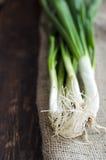 Montón de la cebolla joven fresca Foto de archivo