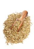 Montón de la semilla de hinojo con la cucharada de madera Imagen de archivo libre de regalías