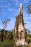 Montón de la termita Foto de archivo libre de regalías