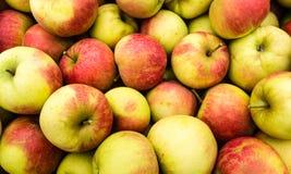 Montón de manzanas del cierre Fotografía de archivo