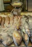 Montón de pescados frescos coloridos en el mercado mojado de Singapur en China Imágenes de archivo libres de regalías