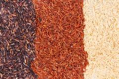 Montón del arroz marrón, negro y rojo como fondo, sano, concepto libre de la nutrición del gluten Fotografía de archivo libre de regalías