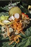 Montón del estiércol vegetal Imágenes de archivo libres de regalías