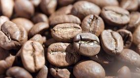 Montón extremo del primer de los granos de café que giran rodeado por la luz del sol lista para hacer el café express almacen de metraje de vídeo