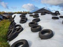 Montón grande del ensilaje como forraje cubierto en los neumáticos de goma y el plástico blanco en granja en Alemania del norte Fotografía de archivo