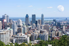 从Mont皇家观看的蒙特利尔地平线 免版税库存照片