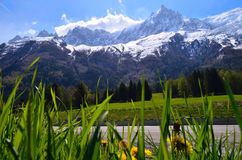 Mont Blanc Mountain covered with snow in spring. Amazing panorama with snow avalanche of French Alps through the green grass in th. E spring Royalty Free Stock Photos