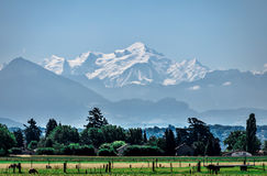 Mont Blanc and open field. Stock Photography