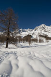 Mont Blanc seen from Val Ferret Courmayeur, Aosta Valley, Italy Royalty Free Stock Photos