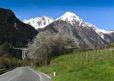 Mont Blanc - strada Immagine Stock Libera da Diritti