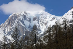 Mont Blanc Summit Foto de archivo