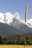 Mont Blanc y campo de maíz Fotos de archivo