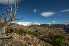 Mont Fitz Roy View stock foto