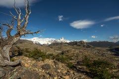 Mont Fitz Roy View stockfoto
