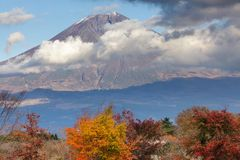 Mont fuji in autumn Royalty Free Stock Image