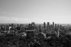 Mont-Royal view Stock Images