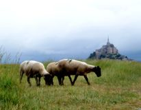 Mont Saint Michel Bay Royalty Free Stock Photography