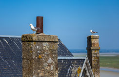 Mont Saint Michel, Bretagna, Francia Fotografie Stock