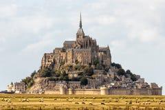 Mont Saint Michel e os carneiros imagem de stock royalty free