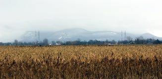 Mont St-Hilaire imagen de archivo