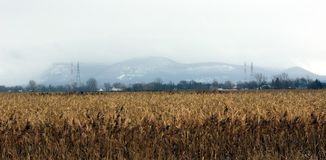 Mont St-Hilaire. In Southern Quebec in Winter stock image