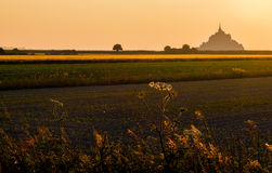 Mont St Michel landscape at golden sunset. During a wonderful sunset with golden light, the silhouette of the abbey of Mont Saint Michel (Normandy, North of Stock Image