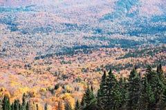 加拿大秋天mont tremblant魁北克的季节 免版税库存照片