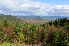 与秋叶,魁北克,加拿大的Mont Tremblant 库存照片