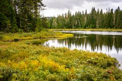 Mont-Tremblant nationalpark, Kanada - landskap royaltyfri bild