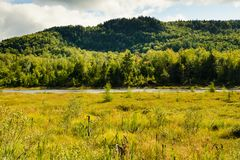 Mont-Tremblant nationalpark, Kanada - landskap med sjön royaltyfri bild