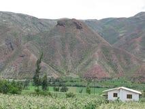 Montañas De Peru, praderas Rodeada de Verdes Stockbilder