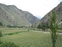 Montañas De Peru, praderas Rodeada de Verdes Lizenzfreies Stockbild